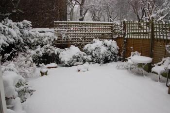 A London Yard in Winter